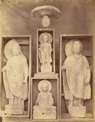 Collection of statues of Buddha, from Jamal-Garhi. 1003974